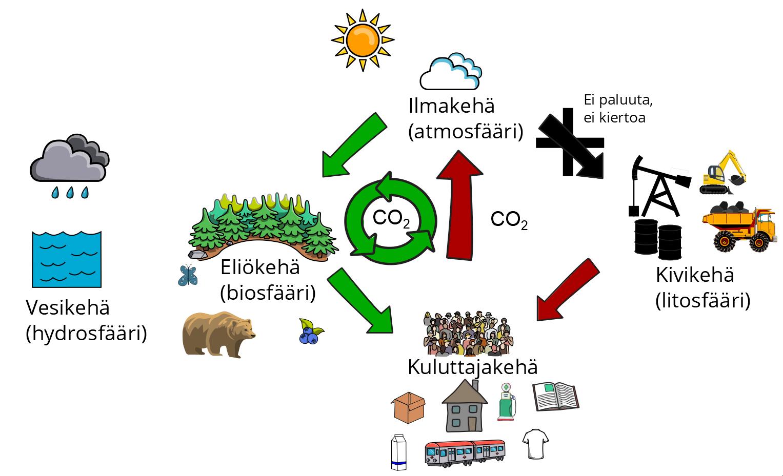 Biotalouden hiilen kierto; yksinkertaistettu esitys